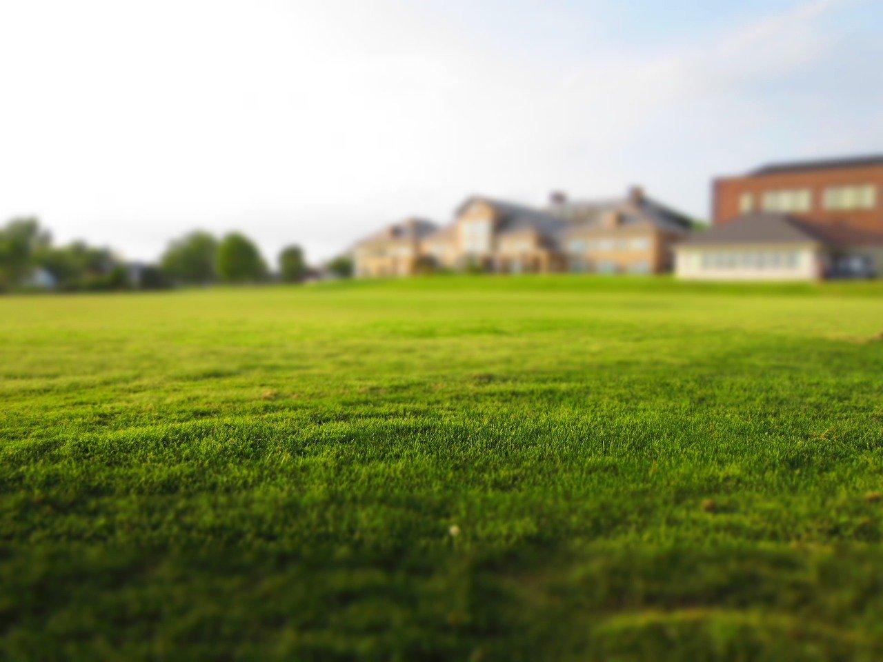 実家が所有していた土地が再開発の対象になり売約した資金の使い方について(2)